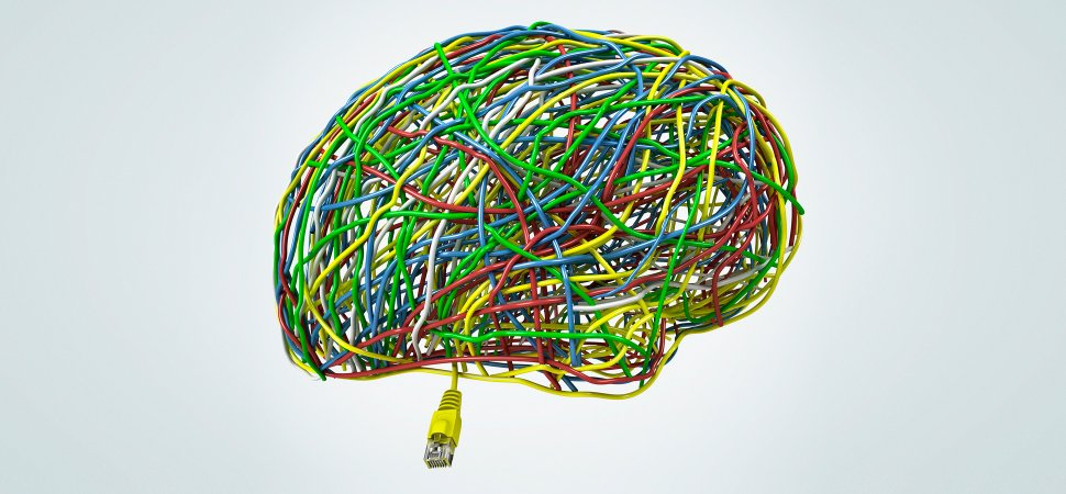Life   3 Scientifically Proven Ways To Strengthen Your Brain   We Must Cherish Our Brains
